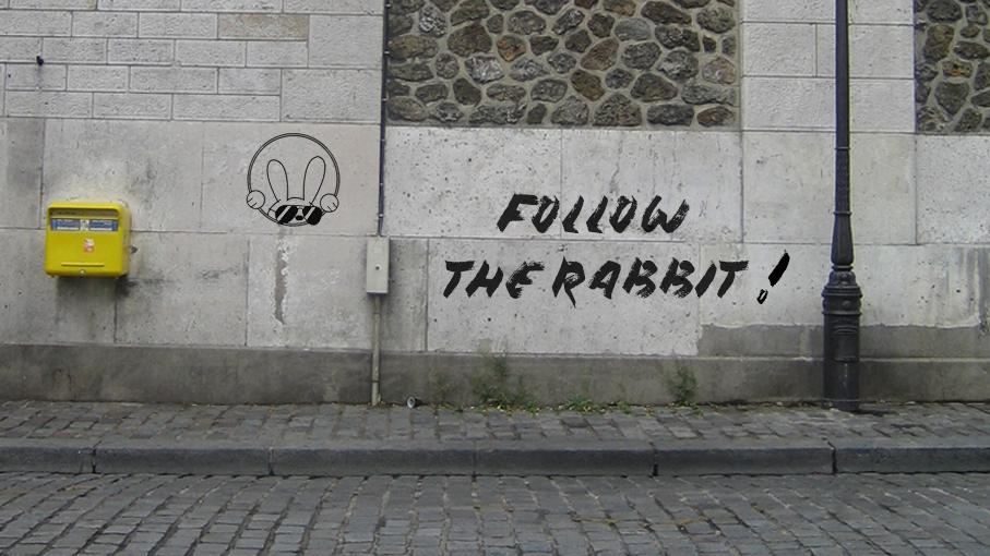 Crazy Rabbit_follow the rabbit
